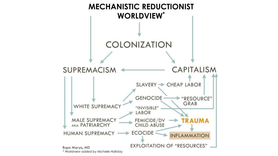 The Roots — and Replacement — of Colonization