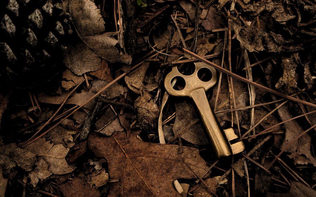 The Key to Sustainability