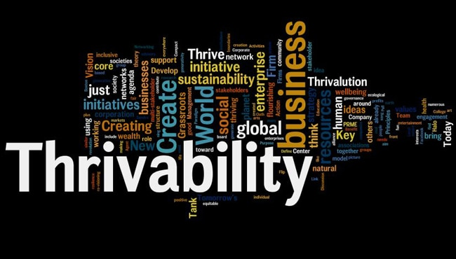 Beyond the Buzzwords: The Need for a Deeper Look at Thrivability, Regenerativity and Resilience